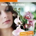 OBI katalog