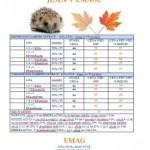 Agencija Manager katalog